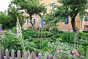 Haus mit schönem Garten, Hosterwitz, Dresden, Sachsen, Deutschland.|.house with nice garden, Hosterwitz, Dresden, Germany