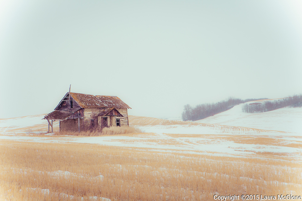 Abandoned Praire House in snowy field, rural Saskatchewan