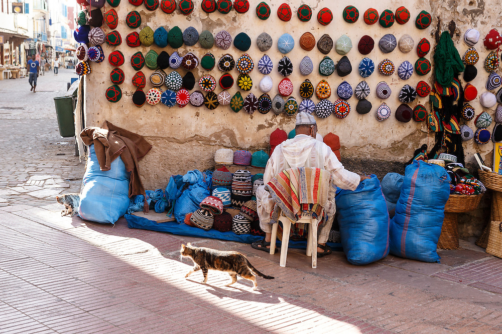 Cats playing in spotlight near hat vendor, Essaouira, Morocco.
