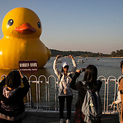 Beijing, China 2013. Rubber Duck at Summer Palace.
