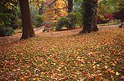 Horticultural Center in Fairmount Park, Fall, Philadelphia, PA