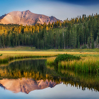 Early morning in King's Creek Meadow, Lassen Volcanic National Park, California.