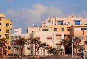 Israel, Tel Aviv cityscape with houses
