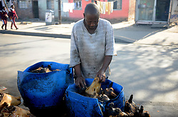 Cape Town-180829 Street vendor Khanyisile Nelisani thoroughly scrubbed and rinsed well to remove all hairs. The Sheep head also know as Smiley is very popular in the township it used to be cooked only if threr was traditional cremony nowadays there are many places that clean and sell this delicacy,cooked or uncooked  Pictures Ayanda Ndamane/African/news/agency ANA