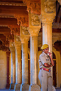 Watching over the Amber Fort, Jaipur, India. <br /> <br /> Nikon D750 98mm  ISO 1600  f16  1/250s