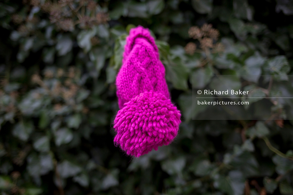 A bright pink bobble child's hat hangs from a twig after being dropped in a street on 15th January 2018, London, England.