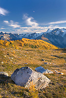 Boulders in Monica Meadows, Purcell Mountains British Columbia Canada