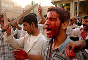Karbala, Iraq--  April 23, 2003     A Shiite  (pls ck sp) worshipper screams as if in a trance while covered in his own blood after having cut himself with a knife on the top of his head.  He and hundreds of thousands other are taking place on the conmmemoration of the assasination of the founder of the Shiite religion, Al-Hussein, who was killed on the 7th century in the City of Karbala. Photo by Essdras M Suarez/Globe staff