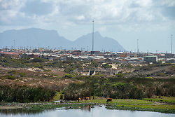 "The densely-populated Khayelitsha, in Cape Town, is seen during South African lockdown on April 7, 2020. Originating during Apartheid, more than a million people are now estimated to be living in the township, many in crowded and difficult conditions. <br /> Households are often large and many families live at close proximity, making social distancing and ""lockdown"" difficult to implement. Many households don't have access to water and sanitation and communal toilets are shared by many. PHOTOS: EVA-LOTTA JANSSON"