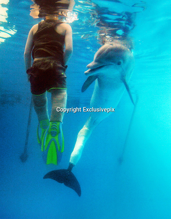 Aug. 16, 2013 - Clearwater, Florida, U.S. -<br /> <br /> Double Amputee Boy From UK Swims With Tailless Dolphin<br /> <br /> Cieran Kelso swims with Winter the tail-less dolphin and one of her trainers Cammie Zodrow (not pictured) in the dolphin's tank at the Clearwater Marine Aquarium 8/16/2013.  -  Cieran Kelso, an 8-year-old from the United Kingdom, got to swim with Winter the dolphin Friday morning 8/16/2013 at the Clearwater Marine Aquarium. Cieran had meningitis when he was younger and his lower legs had to be amputated. He had loved swimming, and when the amputations made it difficult for him to propel himself in the water. His father Gary Kelso figured out a way to attach a scuba flipper to the boy's prosthetic legs and now he swims well. A British newspaper wrote about it and mentioned that Cieran was obsessed with the movie Dolphin Tale and with Winter the dolphin, who also learned to swim with a prosthetic. So Pinellas tourism agency Visit St. Pete-Clearwater flew him and his family to Clearwater and got permission to let him swim with Winter, which is seldom allowed.<br /> ©Exclusivepix