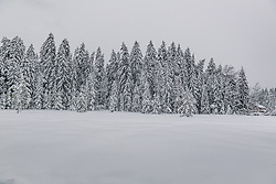 THEMENBILD - Tief verschneite Landschaft rund um den Schwarzsee, aufgenommen am 10. Jänner 2019, Kitzbuehel, Oesterreich // Deep snowy landscape around the Schwarzsee at Kitzbuehel, Austria on 2019/01/10. EXPA Pictures © 2019, PhotoCredit: EXPA/ Stefan Adelsberger