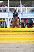 Claudia Verburgt - Abbervail Diamant<br /> FEI World Breeding Jumping Championships for Young Horses 2016<br /> © DigiShots
