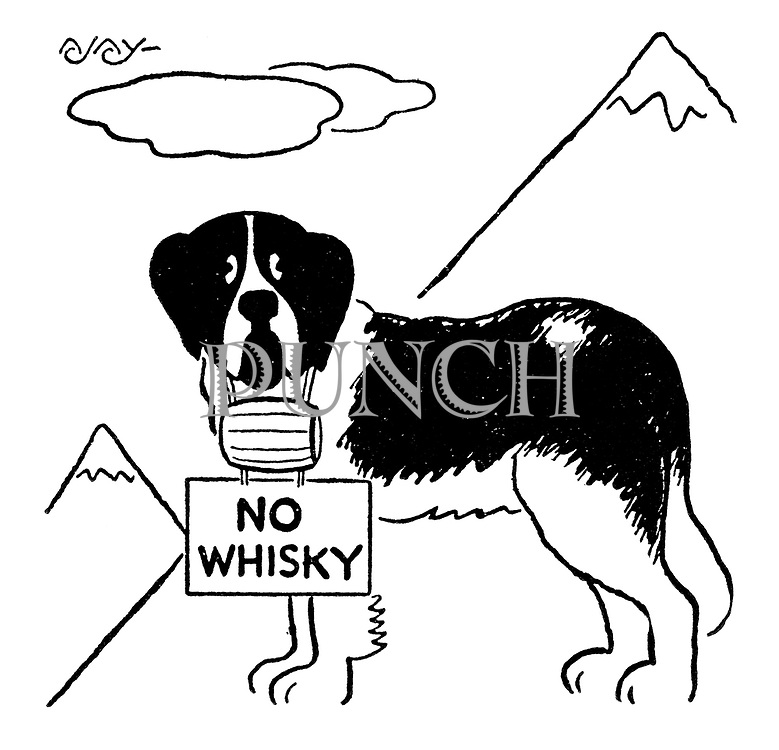 "(A St Bernard carries a sign saying ""No Whisky"" under his brandy barrel)"