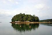 6/25/10 - 7/1/10 Round Pond, Maine. photo © Laura Mueller 2010
