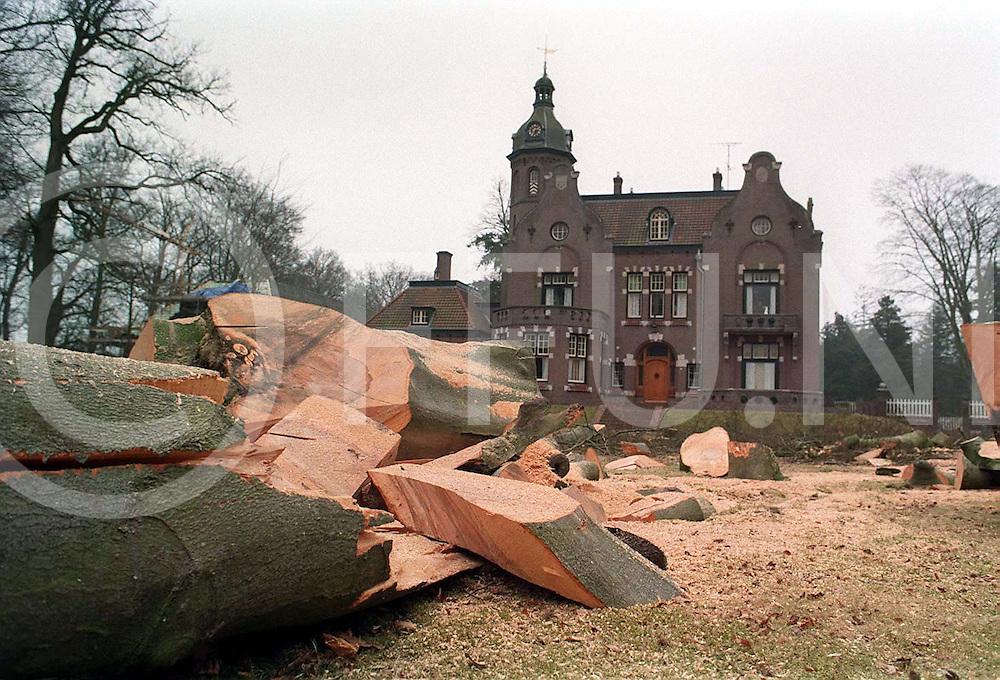 vilsteren : bomen weg bij kasteel..foto frank uijlenbroek©1996