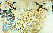 Wall painting from tomb of Akhnaton (Akenaton or Akhenaten) c1375 BC showing waterfowl flying up out of reeds. On left is stand of Papyrus which was used to produce writing material. Cairo Museum, Egypt