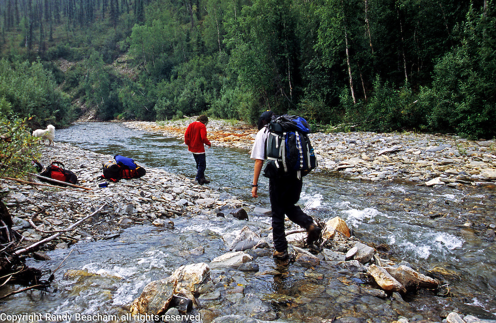 Crossing a creek in the Alaska bush country. North of Bettles, Alaska