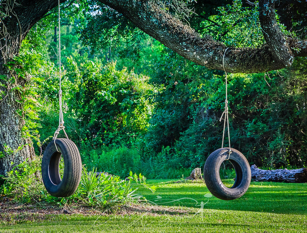 Two tire swings hang from a tree in Bayou La Batre, Alabama, May 9, 2015 (Photo by Carmen K. Sisson/Cloudybright)