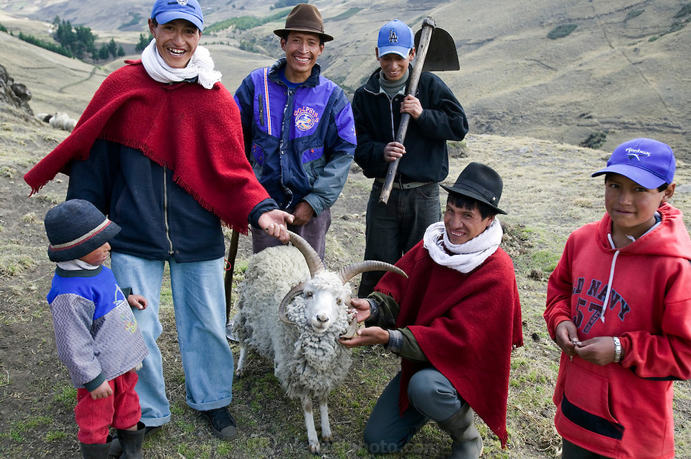 Orlando Ayme shows off one of his sheep which has 4 horns, which he thinks is hilarious. Orlando and his sons and a neighbor are returning from cultivating their potato field. (Supporting image from the project Hungry Planet: What the World Eats.)