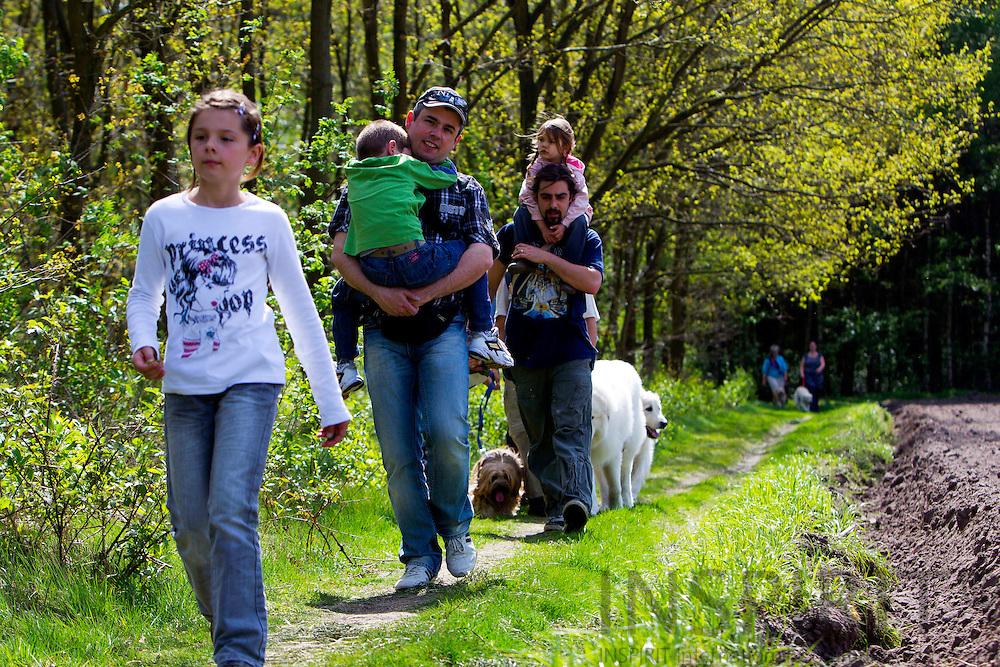 EKSEL - BELGIUM - 12 APRIL 2010 -- Pyreneese Berghond wandeling, Chien de Montagne des Pyrénées promenade, Pyrenean Mountain Dog walk in Eksel. PHOTO: ERIK LUNTANG / INSPIRIT Photo..