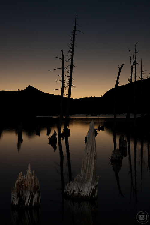 """""""Lake Aloha Sunset 7"""" - Photograph of dead trees and stumps in Lake Aloha at sunset in the Tahoe Desolation Wilderness."""