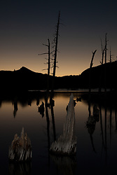"""Lake Aloha Sunset 7"" - Photograph of dead trees and stumps in Lake Aloha at sunset in the Tahoe Desolation Wilderness."