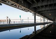 Brooklyn Bridge and FDR