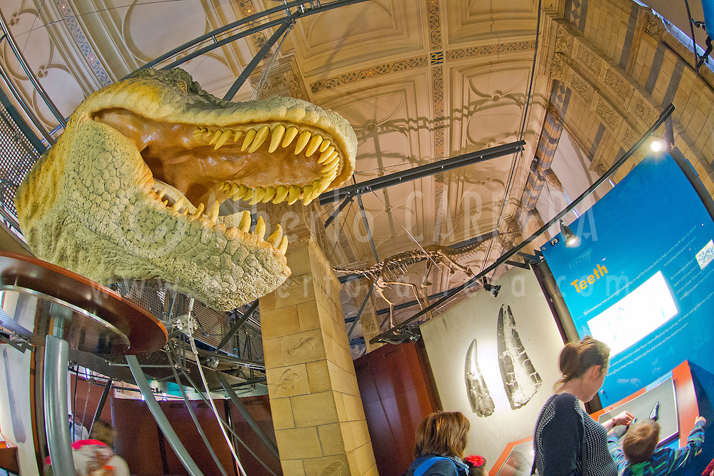 Alberto Carrera, Natural History Museum, London, England, Great Britain, Europe<br /> <br /> EDITORIAL USE ONLY