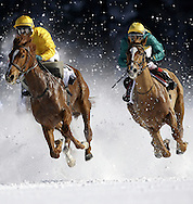 ST. MORITZ, SWITZERLAND - FEBRUARY 10: Raneb with jockey  Markus Kolb aboard on the inside of Puro with jockey Miguel Lopez aboard come around turn 3 in the 2nd race called the Grand Prix Prestige of the White Turf racing held on the frozen surface of Lake St. Moritz on February 10, 2008 in St. Moritz, Switzerland. The White Turf meetings are held on three consecutive Sundays in February each year. Raneb came in first and Puro came in second.