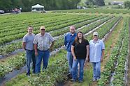 OFB-Welch's U-Pick Strawberry Farm