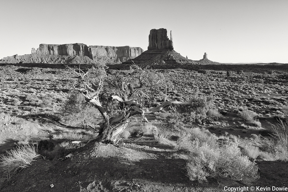 Early morning Monument Valley