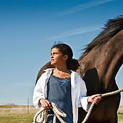 20110320 Morgan Horses