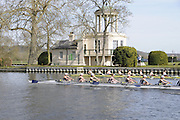 Henley, GREAT BRITAIN,  Cambridge Women's Blue Boat winning the 2012 Women's Boat Race, approaching the finish at  Temple Island. 2012 Henley Boat Races, Raced on Henley Reach, Henley on Thames, England, Sunday  25/03/2012. [Mandatory Credit, Intersport-images}