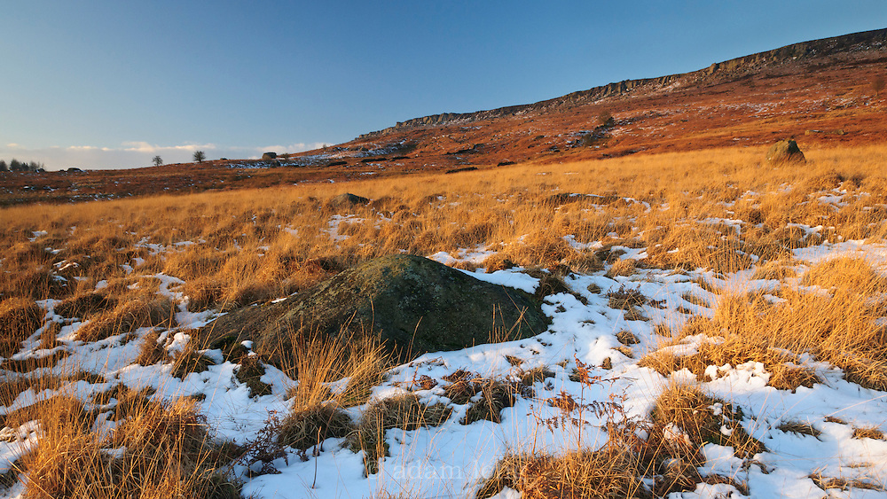 Evening light catches grasses and boulder under a snowy Stanage Edge, Peak District, Derbyshire, UK