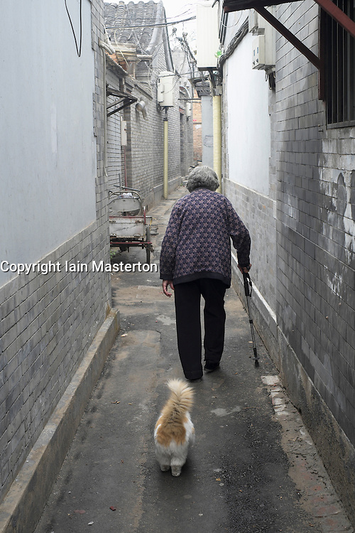 Elderly woman with pet cat in old traditional lane or hutong in Beijing China