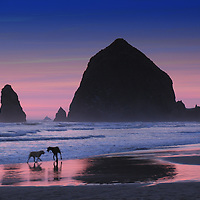 A large rock on a beach silhouetted by a sunset and two dogs on the sand