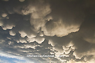 63891-02410 Mammatus clouds after storm,  Marion Co. IL