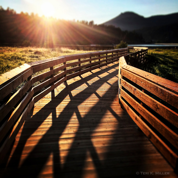 Midsummer morning shadows. Sunrise shadows on the boardwalk at Evergreen Lake, Evergreen, Colorado.