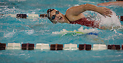 Lehi High School swimmer Amy Chapman swims front crawl during practice at the Lehi Legacy Center, Tuesday, Dec. 18, 2012.