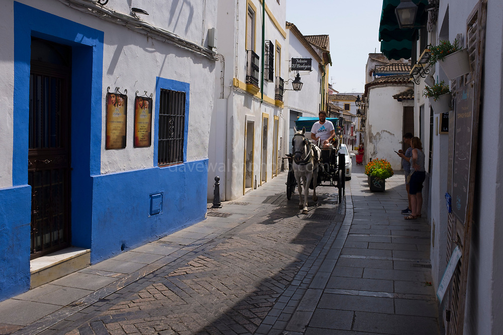 Tourist horse and carriage on Calle Cardenal Gonzalez, Cordoba, Andalusia, Spain