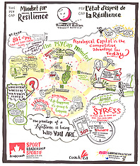 Graphic Recordings / Enregistrements graphique