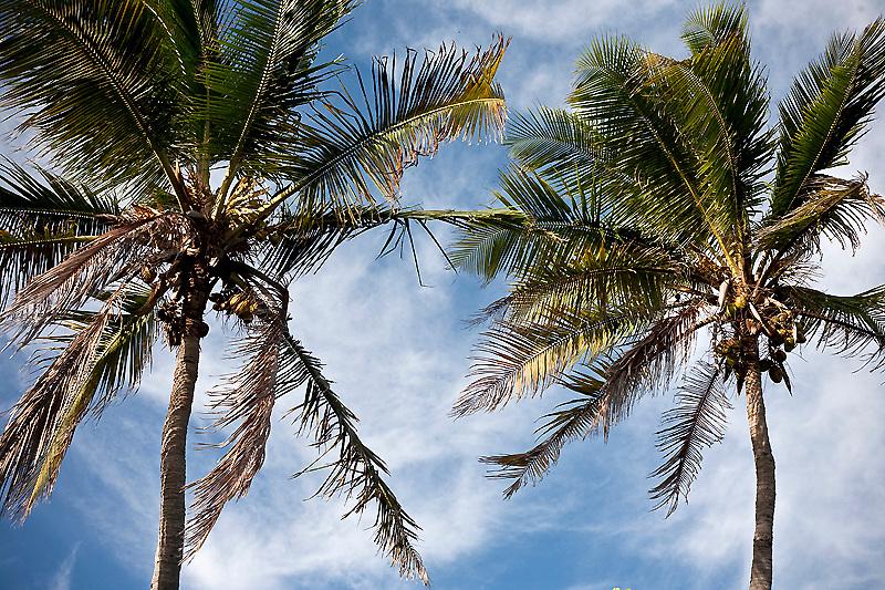Big Pine Key, Florida