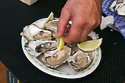 Sylt, Germany. Hörnum. 25th Hafenfest (Harbor Festival). Sylter-Royal oysters.
