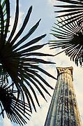 Column and palm trees on Lake Garda, Italy