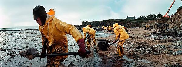 Frankrijk, Batz sur mer, 10-01-2000..Olievervuiling door het zinken van de olietanker Erica en de schoonmaak door vrijwilligers. De oliemaatschappij Total staat nu, vanaf 12-2-2007 terecht voor de gevolgen. Veel hulpverleners hebben een verhoogde kans opkanker, omdat destijds met beperkte bescherming werd gewerkt, en tienduizende vogels kwamen om vanwege dit ongeluk met deze tanker voor de kust...Foto: Flip Franssen