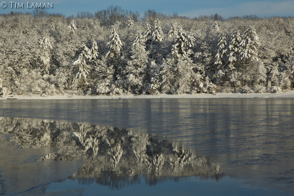 Walden Pond, the morning after a February snowstorm.
