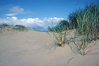 Sand dunes....travel, lifestyle
