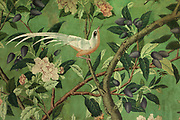 Hand painted chinoiserie wallpaper, detail of bird, fruit trees and flowers, in the Chinese drawing room, in Abbotsford House, built 1817-25 by Sir Walter Scott, 1771-1832, Scottish writer and poet, near Melrose, in the Borders, Scotland. The wallpaper was a gift from Scott's cousin Hugh Scott, who worked for the East India Company. The building is in Scottish Baronial style and includes Scott's personal collections of books, furniture and Scottish historical artefacts, making it a centre for European Romanticism. The Scott family still own the building, which is open to the public as a tourist attraction. Picture by Manuel Cohen