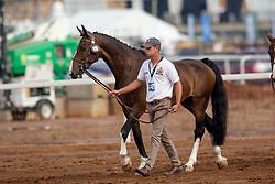 Degrieck Dries, BEL, Dirk, Garrelt, Grenadier, Zico, Zilverone<br /> World Equestrian Games - Tryon 2018<br /> © Hippo Foto - Sharon Vandeput<br /> 20/09/2018