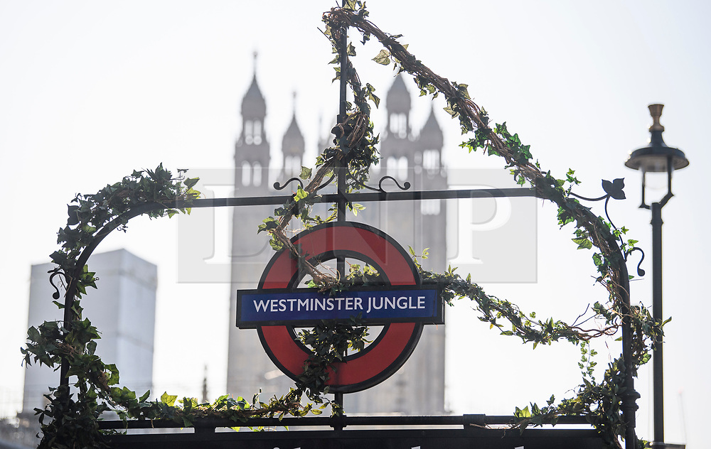 """© Licensed to London News Pictures. 22/10/2019. London, UK. The sign for Westminster Underground station is changed to read """"WESTMINSTER JUNGLE"""" as part of a promotion, on the day that MPs will vote on a reading of the Brexit Withdrawal Agreement Bill.  Last week Parliament sat on a Saturday for the first time since 1982, but failed to vote on Boris Johnson's new Brexit deal. Photo credit: Ben Cawthra/LNP"""
